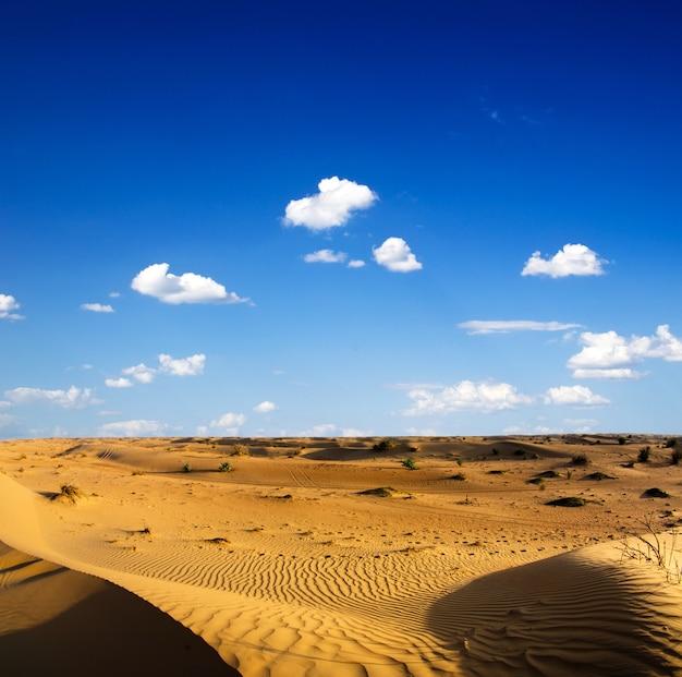 Woestijnlandschap met blauwe hemel
