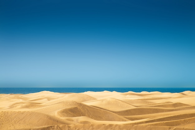 Woestijnpanorama van de duinen van maspalomas