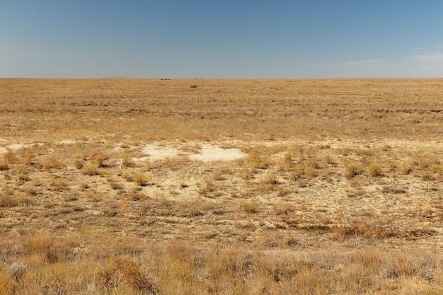 Woestijnsteppe in de herfst in het aral-gebied van kazachstan droog gras
