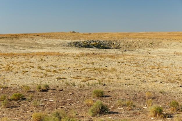 Woestijnsteppe in de herfst in het aral-gebied van kazachstan