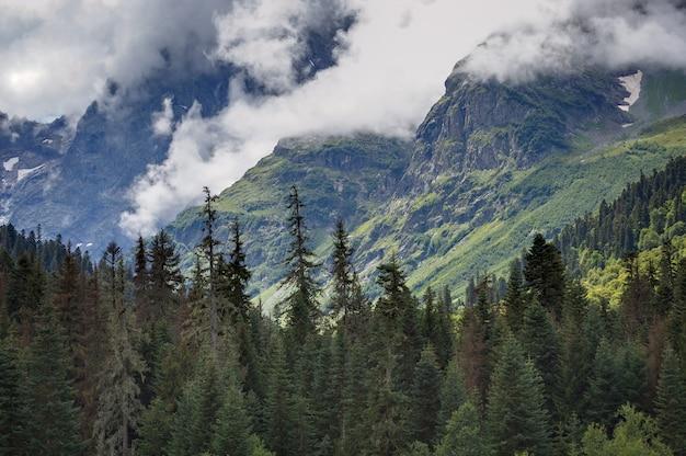 Wolken boven de toppen van de met bomen overwoekerde rotsbergen