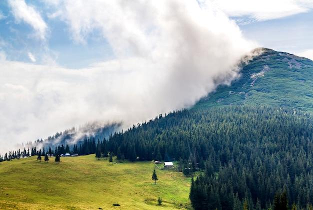 Wolken boven een berg met groene bos en grasweide
