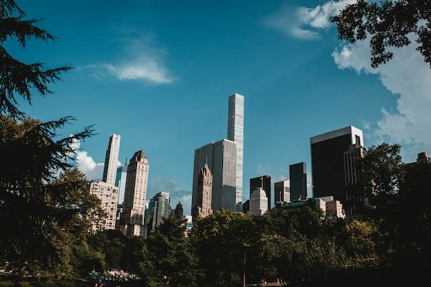 Wolkenkrabbers van new york schot uit het park
