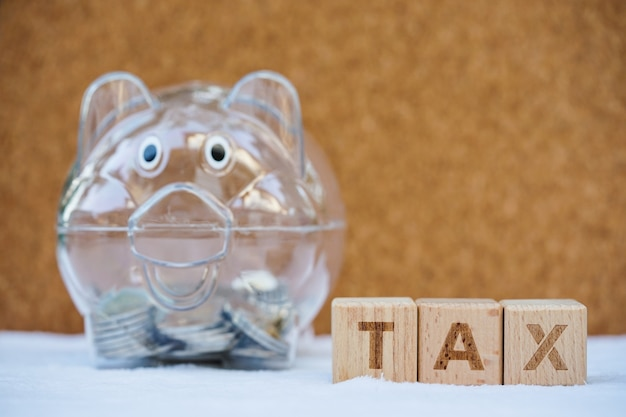 Woordblok tax met spaarvarken. inkomsten, uitgaven, belastingen en financiële gegevens.