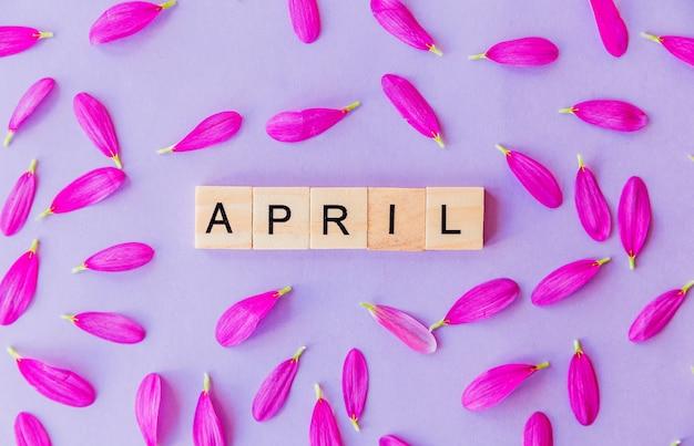 Word april samengesteld uit houten blokken en bloemblaadjes op paarse achtergrond