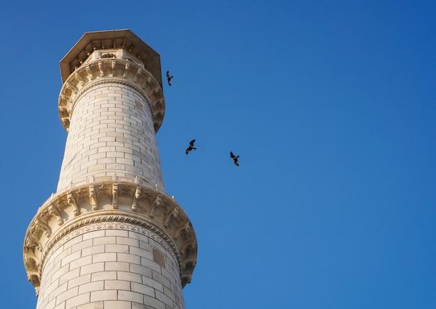 Wormmening van toren met duidelijke blauwe hemel en vliegende vogels