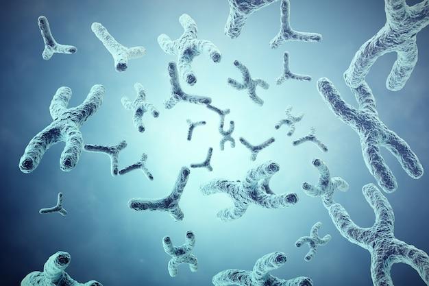 Xy-chromosomen op grijs