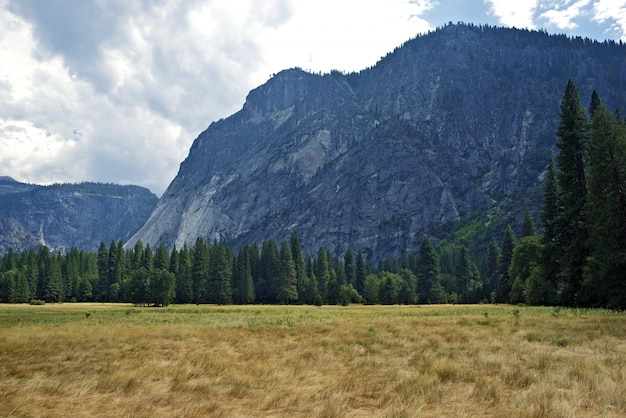 Yosemite np valley