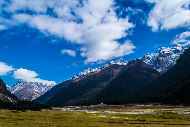 Yumthang valley in de maand maart