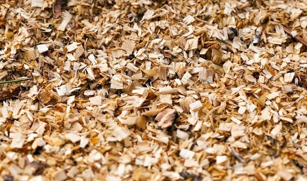 Zaagsel dat overbleef na het verwerken van dennenhout, industriële productie van dingen gemaakt van hout van dennen en sparren, close-up