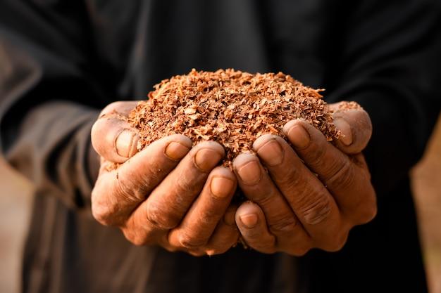 Zaagsel of veel houtsnippers in handen van mannen.
