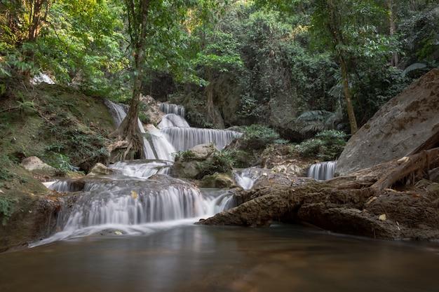 Zacht water in natuurlijke obsessies nodigt uit. zuivere, verfrissende groene bossen.