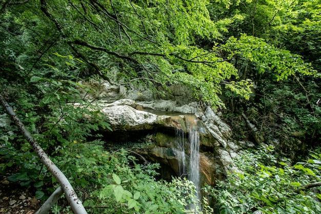 Zacht water van de beek in het park