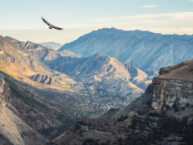 Zachte focus. stad in een diepe bergkloof. authentiek dagestani bergdorp.