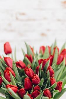 Zachte kleur tulpins achtergrond