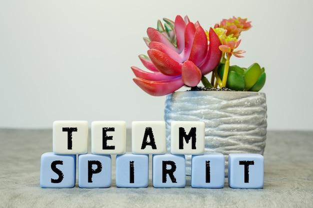 Zachte kubussen met de afkorting team spirit met een bloem op een witte achtergrond