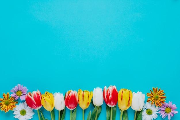 Zachte lentebloemen op blauw gerangschikt