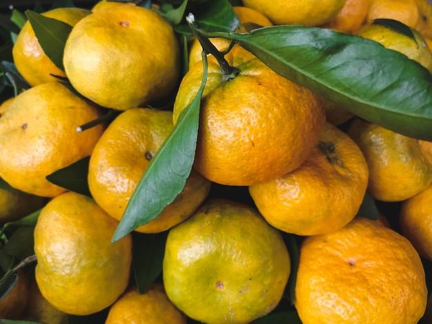 Zachte mandarijnenantenne