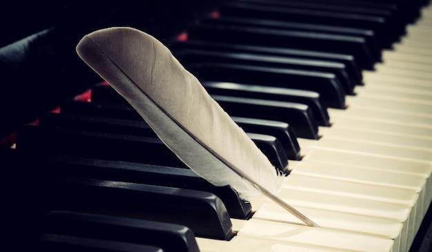 Zachte muziek concept