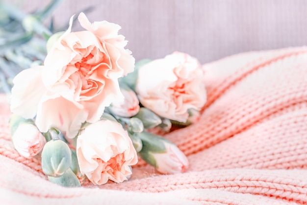 Zachte roze anjerbloemen op een licht gebreide muur