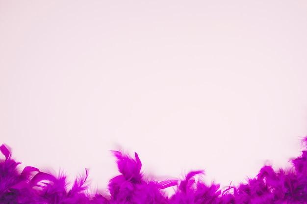 Zachte veren op de lichtroze achtergrond met ruimte voor het schrijven van de tekst