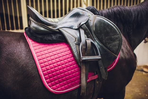 Zadel met stijgbeugels op de rug van een sportpaard