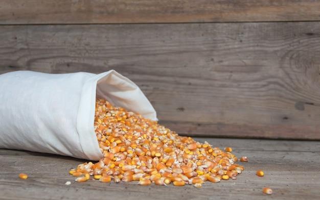 Zak met hele maïs om dieren te voeren