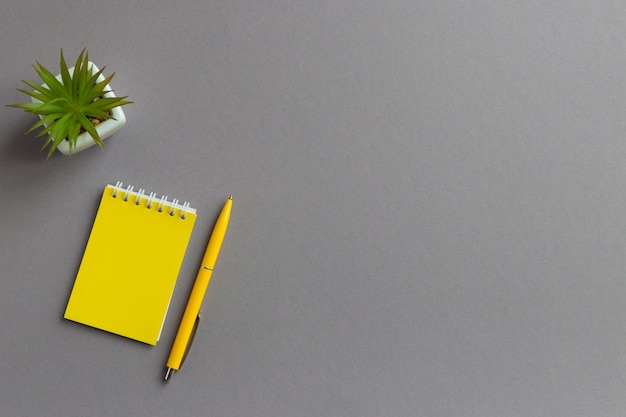 Zakelijk plat met notitieblokpen en vetplant op grijze tafel