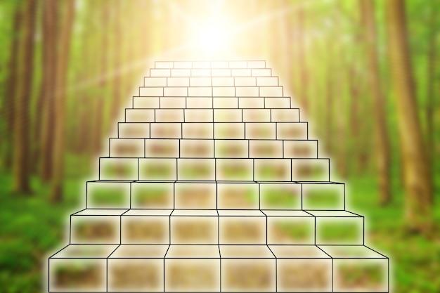 Zakelijke trap van succes en vooruitgang in een bos
