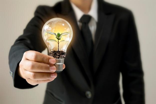 Zakenman hand met energiebesparende gloeilamp met planten die groeien op munten in gloeilampen
