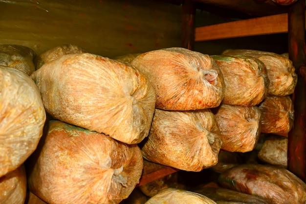 Zakken zaagsel waar paddenstoelen groeien