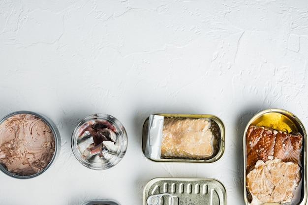 Zalm, tonijn, forel makreel en ansjovis ingeblikte vis in blikjes set, op wit