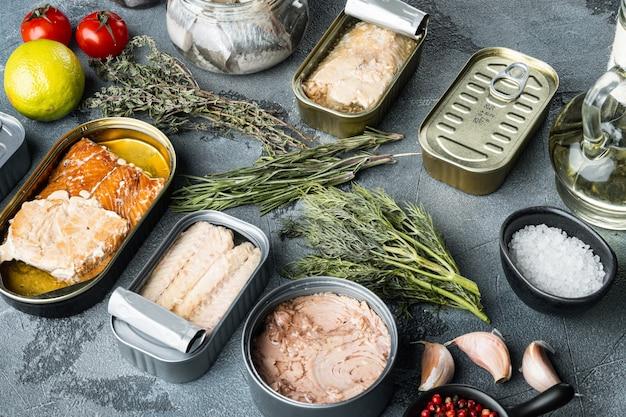 Zalm, tonijn, forelmakreel en ansjovis - ingeblikte vis in blikken blikjes, op grijs