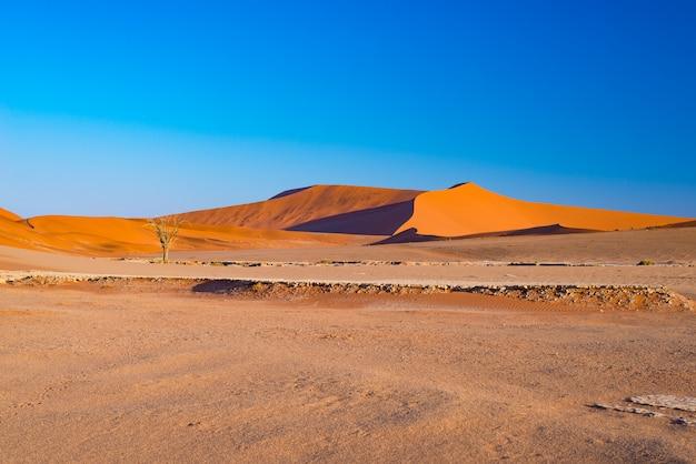 Zandduinen in de namib-woestijn bij dageraad, roadtrip in het prachtige namib naukluft national park.