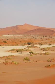 Zandduinen in de woestijn van namib, afrika, namibië