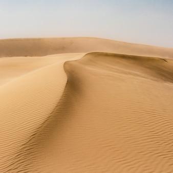 Zandduinen in een woestijn
