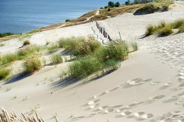Zandduinen op de koerse landtong bij de stad nida. klaipda, litouwen