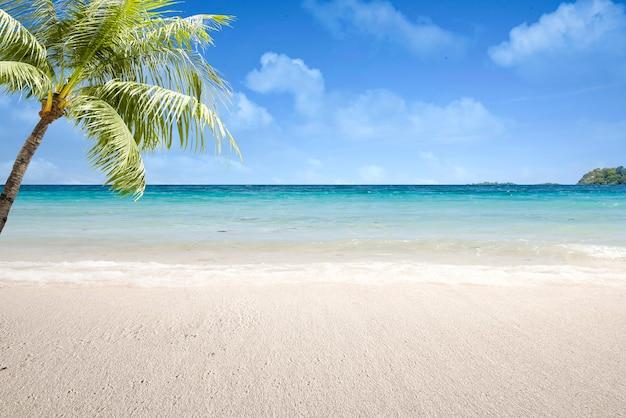 Zandstrand met de blauwe oceaan en de blauwe lucht