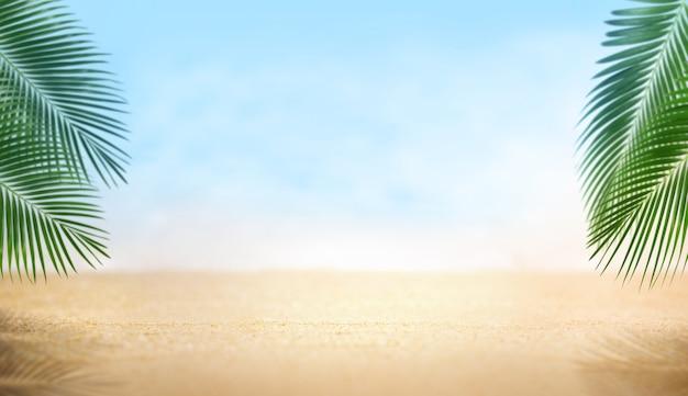 Zandstrand mooi met palmbladeren, zomer op het strand-concept, lege achtergrond