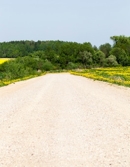 Zandweglandschap in de zomer, zomer of lente