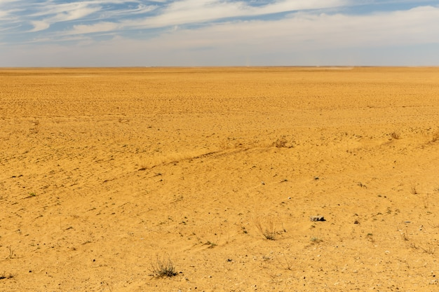 Zandwoestijn in kazachstan