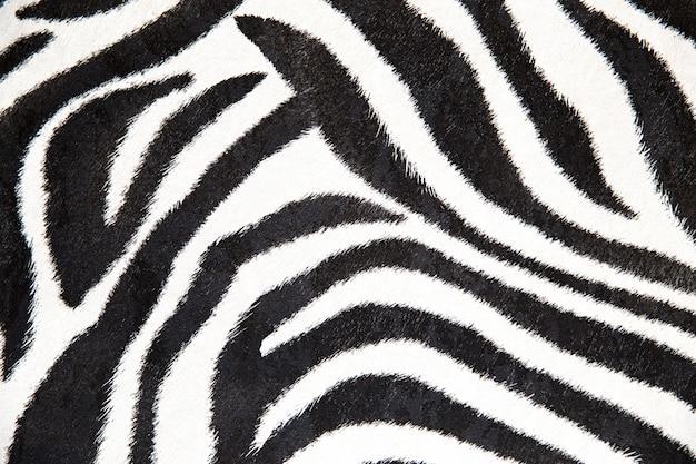 Zebra textuur