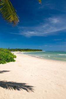Zee en strand achtergrond met kopie ruimte