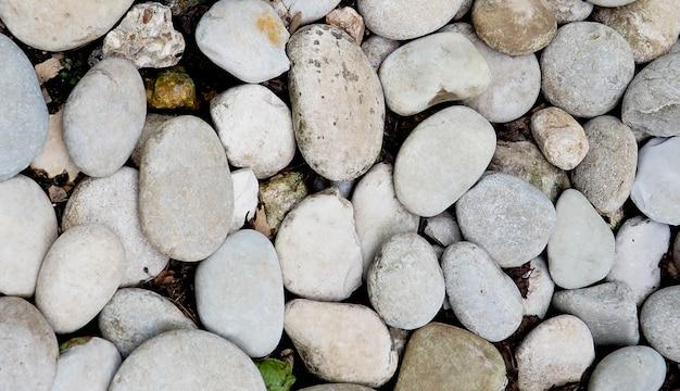 Zee stenen van de kust