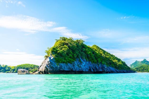 Zee vakantie natuurparadijs boom