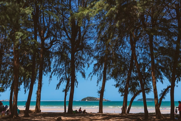 Zeegezicht en dennenkust, terwijl toeristen geleidelijk aan op het strand komen rusten.