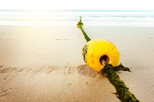 Zeegezicht met touw en boei in zeewieren
