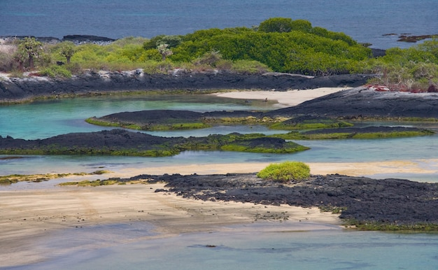 Zeegezicht van de galapagos-eilanden