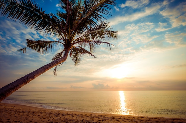 Zeegezicht van mooi tropisch strand met palm bij zonsopgang
