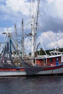 Zeegezichten schepen, schip